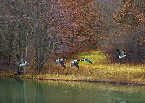 In Flight by Ron Grafe