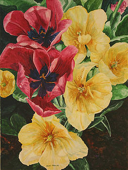 In Full Bloom by Helen Shideler