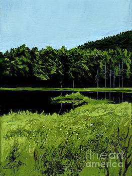 In the Adirondacks by Robert Coppen