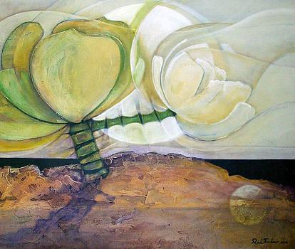 In the Beginning by Riek  Jonker