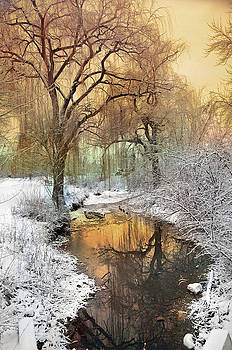 In the Calm of Winter by Tara Turner