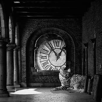 In The Darkest Hour by Studio Yuki