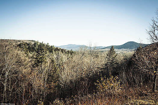 In The Distance , White Mountains  by Debra Forand