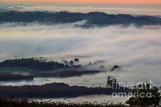 In the Mist 2 by Jean Bernard Roussilhe