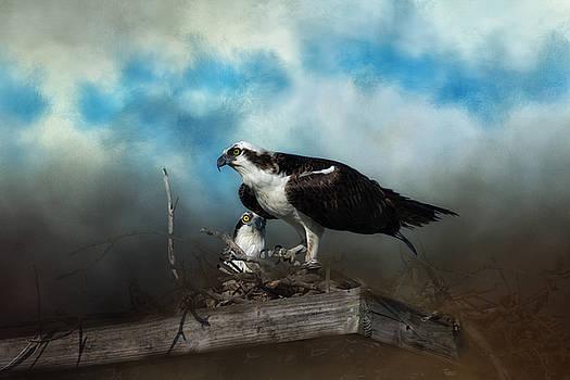 Kim Hojnacki - In The Nest