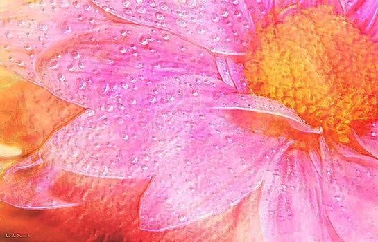 Linda Sannuti - In the pink