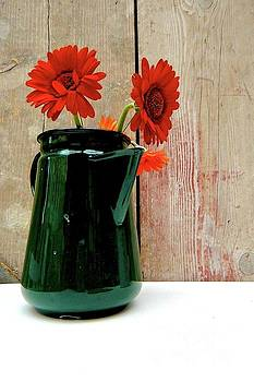 In the pot by Gary Bridger