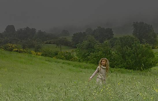 In the rain by Patrick Flynn