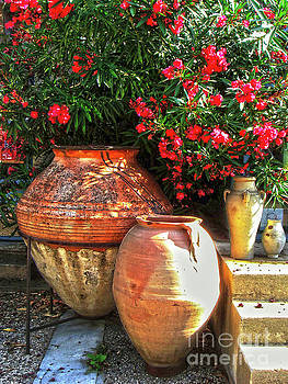 In The Shadow Of Oleander by Jasna Dragun