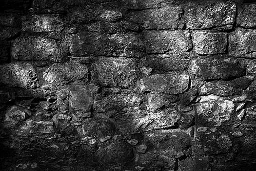 In the Shadows by Jason Moynihan