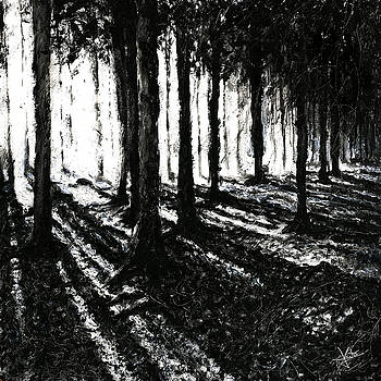 In the Woods 3 by Christian Klute