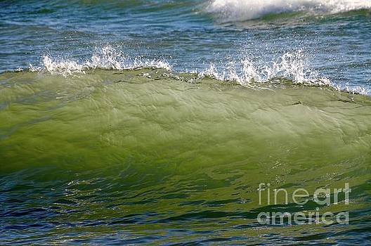 Incoming Wave by Sandra Updyke