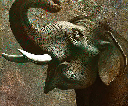 Indian Elephant 3 by Jerry LoFaro
