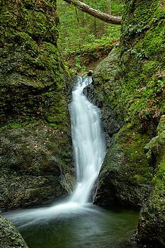 Karol  Livote - Indian Well Flows
