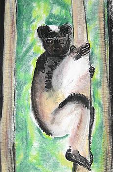 Indri by Darkest Artist