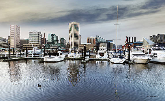 Inner Harbor Skyline by Brian Wallace