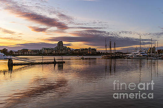 Inner Harbour by Carrie Cole