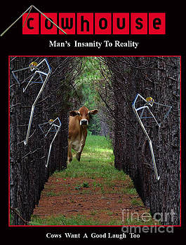 Insanity to Reality No. I by Geordie Gardiner