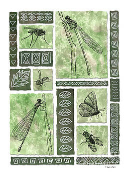 Insects of Hawaii II by Diane Thornton