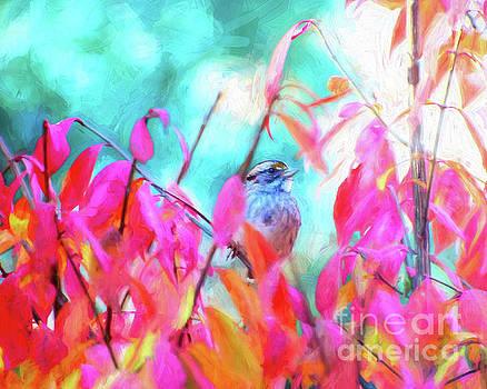 Inside The Burning Bush by Kerri Farley