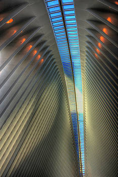 Inside The Oculus by Paul Wear
