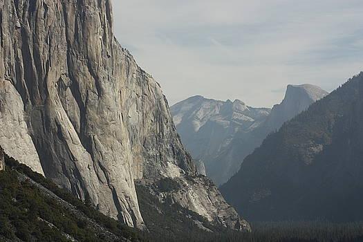 Inside Yosemite by Robin Regan