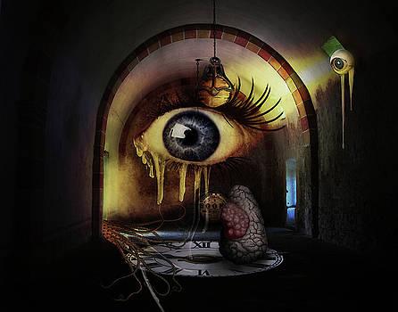 Insomnia by Terry Fleckney