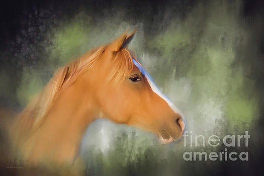 Michelle Wrighton - Inspiration - Horse art by Michelle Wrighton