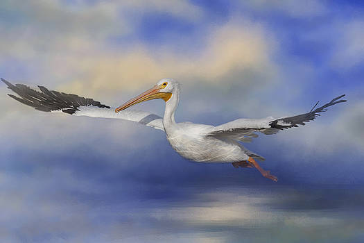 Kim Hojnacki - Into The Clouds