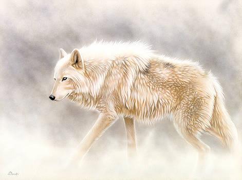 Into The Mist by Sandi Baker
