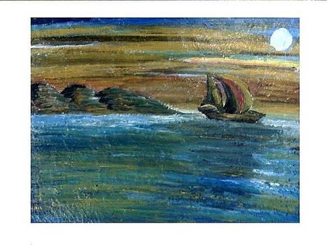 Into the sea by Aida Behani