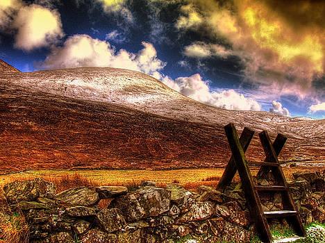 Into The Wild by Kim Shatwell-Irishphotographer