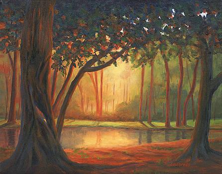 Into the Woods by Elaine Farmer