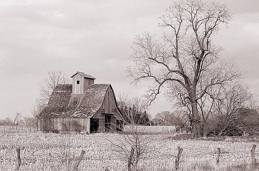 Iowa Farm by Jame Hayes