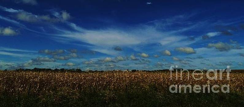 Iowa's Sky by J L Zarek