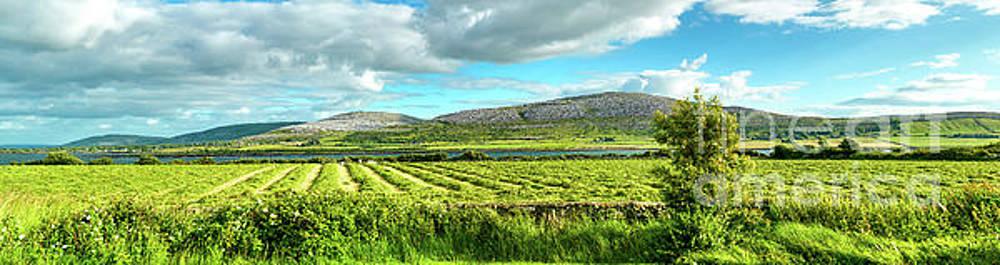 Ireland  - Burren Panorama by Juergen Klust