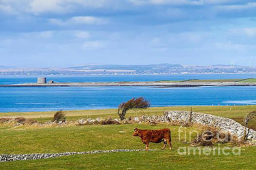 Ireland - Galway Bay by Juergen Klust
