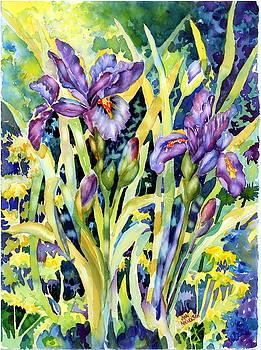 Iris by Ann  Nicholson