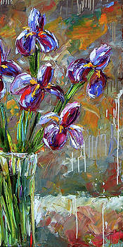 Iris Colors by Debra Hurd