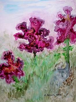 Irises by B Kathleen Fannin