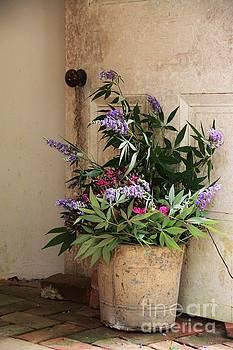 Isabela's Flowers at Rosedown Plantation by Susan Bordelon