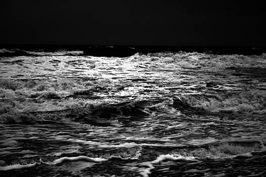Isabel's Ocean by Tom McElvy