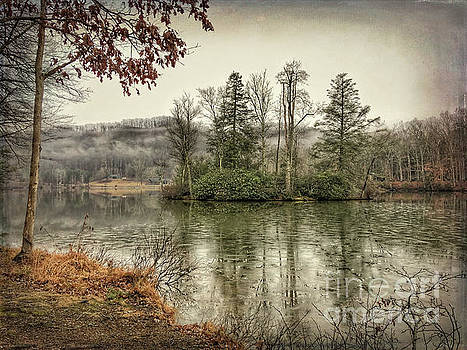 Island of Trees at Hungry Mother State Park by Kerri Farley