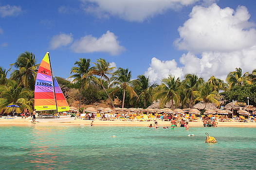 Isle Pinel, St. Martin by Roupen  Baker