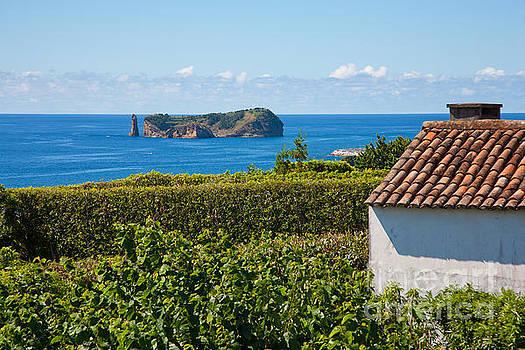Gaspar Avila - Islet in Azores