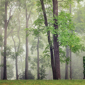 Isolated by Victoria Winningham