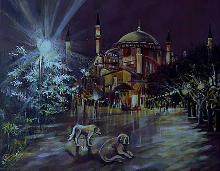 Istanbul Night by Anna Duyunova
