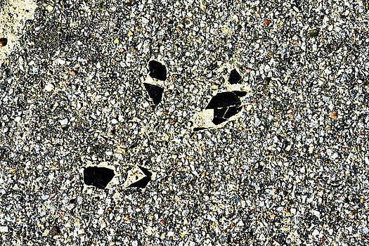 It rocks by Sitara Bruns