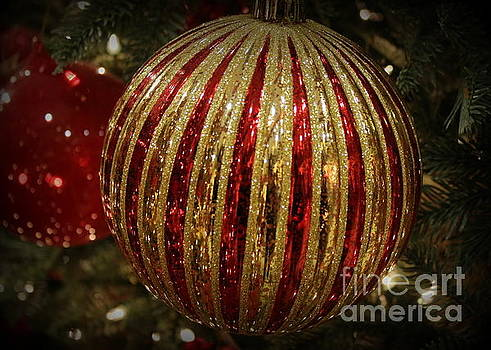 Red and Gold for Christmas by Dora Sofia Caputo Photographic Art and Design
