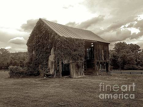 Ivy Barn by Sean Cupp